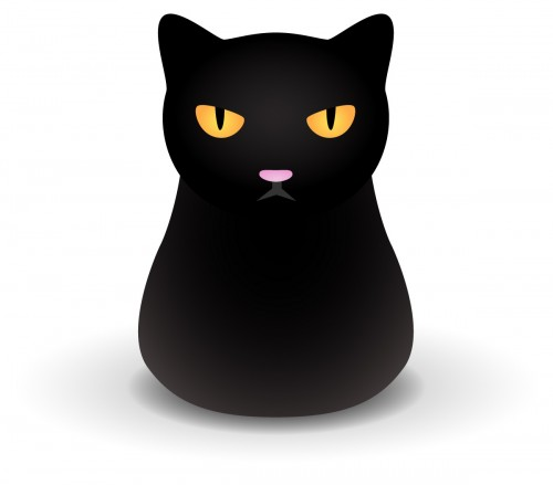 black cat coming
